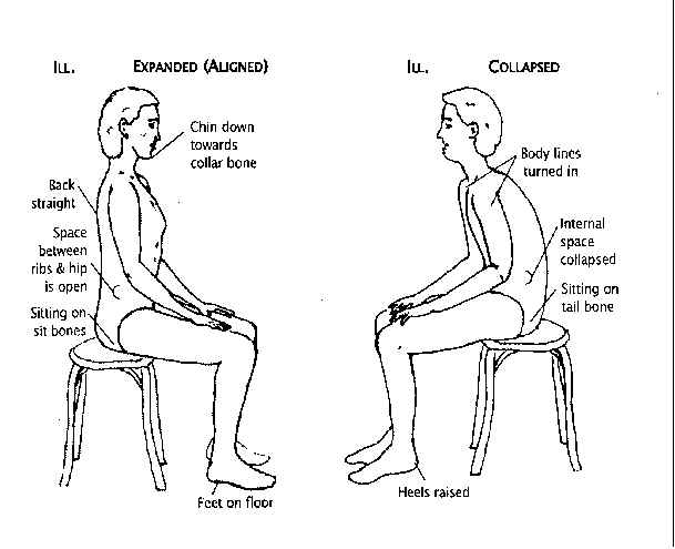 인간의 앉은 자세에 대한 대화
