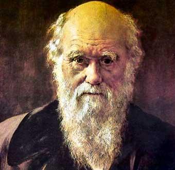 다윈, 진화론이라는 세기의 떡밥을 던지다