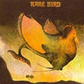 [가사 검열]  by Rare Bird